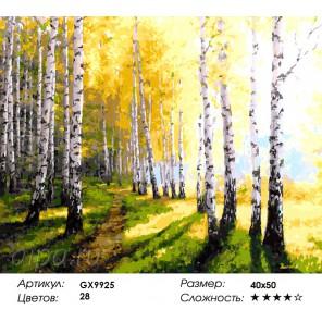 Березовая роща осенью Раскраска картина по номерам на холсте