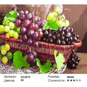 Количество цветов и сложность Гроздья винограда Раскраска картина по номерам акриловыми красками на холсте