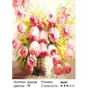Розовые тюльпаны Раскраска картина по номерам акриловыми красками на холсте