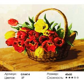 Корзинка тюльпанов Раскраска картина по номерам акриловыми красками на холсте