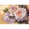 Белые розы 35247 Набор для вышивания Dimensions ( Дименшенс )