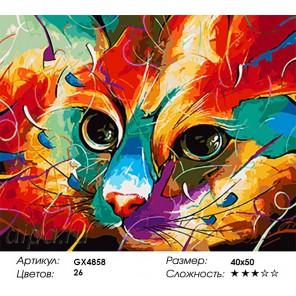 Количество и сложность Разноцветный взгляд Раскраска картина по номерам акриловыми красками на холсте