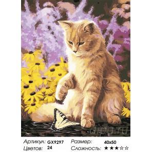 Количество и сложность Кошечка и бабочка Раскраска картина по номерам акриловыми красками на холсте