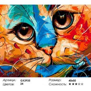 Количество и сложность Цветной взгляд кошки Раскраска картина по номерам акриловыми красками на холсте