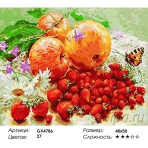 Количество и сложность Дары лета Раскраска картина по номерам акриловыми красками на холсте
