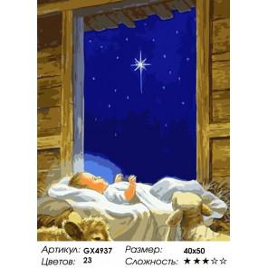 Количество и сложность Младенец Иисус Раскраска картина по номерам акриловыми красками на холсте