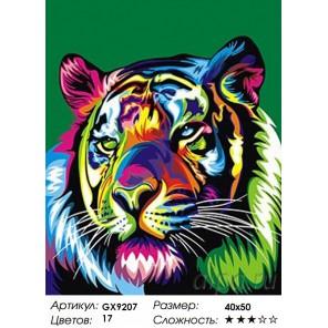 Количество и сложность Радужный хищник Раскраска картина по номерам акриловыми красками на холсте