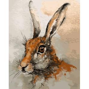 Заяц Раскраска картина по номерам акриловыми красками на холсте Menglei
