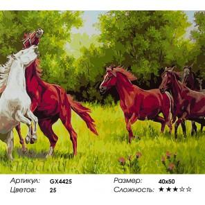 Ретивые кони Раскраска картина по номерам на холсте