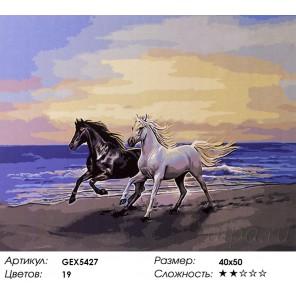 Количество цветов и сложность Белый конь и чёрный Раскраска картина по номерам акриловыми красками на холсте