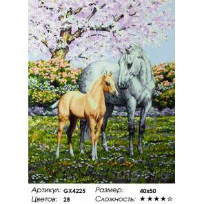 Количество цветов и сложность Весенние лошади Раскраска картина по номерам акриловыми красками на холсте