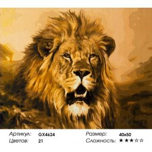 Количество цветов и сложность Величественный лев Раскраска картина по номерам акриловыми красками на холсте