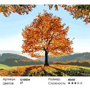 Количество цветов и сложность Сквозь солнце Раскраска картина по номерам акриловыми красками на холсте