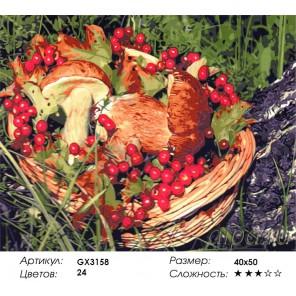 Количество цветов и сложность Грибное лукошко Раскраска картина по номерам акриловыми красками на холсте