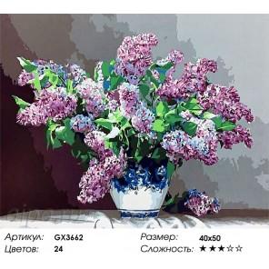 Количество цветов и сложность Сирень в изысканной вазе Раскраска картина по номерам акриловыми красками на холсте