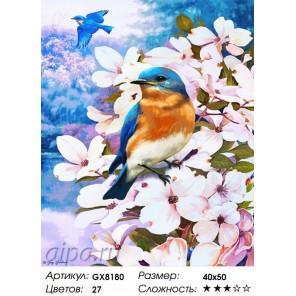 Количество цветов и сложность Весенний полет Раскраска картина по номерам акриловыми красками на холсте