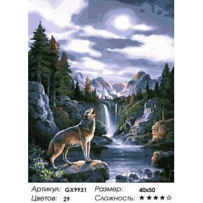 Полночный вой Раскраска картина по номерам на холсте