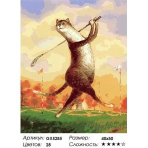 Количество цветов и сложность Кот-гольфист Раскраска картина по номерам акриловыми красками на холсте