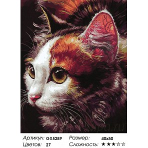 Количество цветов и сложность Маленькая хищница Раскраска картина по номерам акриловыми красками на холсте