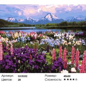 Долина цветов Раскраска картина по номерам на холсте