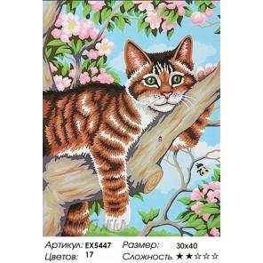 Котенок Тиграша Раскраска картина по номерам на холсте