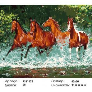 Количество цветов и сложность Скакуны Раскраска картина по номерам акриловыми красками на холсте