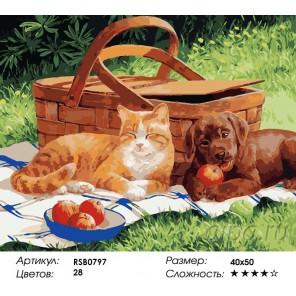 Друзья на пикнике Раскраска картина по номерам на холсте