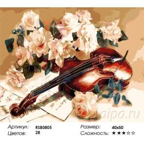 Количество цветов и сложность Первая скрипка Раскраска картина по номерам акриловыми красками на холсте