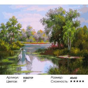 Две цапли Раскраска картина по номерам на холсте