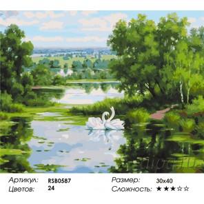 Лебединые ласки Раскраска картина по номерам на холсте