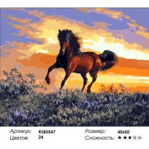 Конь на закате Раскраска картина по номерам на холсте