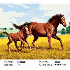 Количество цветов и сложность На Кубани Раскраска картина по номерам акриловыми красками на холсте