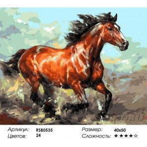 Количество цветов и сложность Ветер свободы Раскраска картина по номерам акриловыми красками на холсте