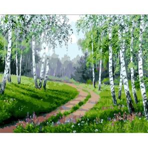 Березовая роща Раскраска картина по номерам на холсте