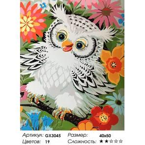 Веселый совенок Раскраска картина по номерам акриловыми красками на холсте