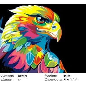 Количество цветов и сложность Радужный орёл Раскраска картина по номерам акриловыми красками на холсте