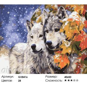 Волки под кленом Раскраска картина по номерам на холсте