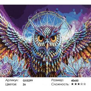 Количество цветов и сложность Хрустальная сова Раскраска картина по номерам акриловыми красками на холсте