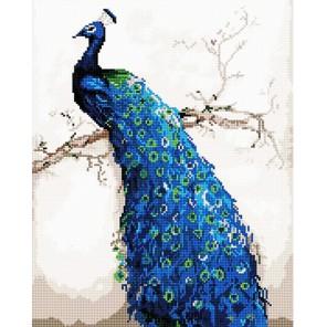 Синий павлин Алмазная мозаика вышивка на подрамнике Molly