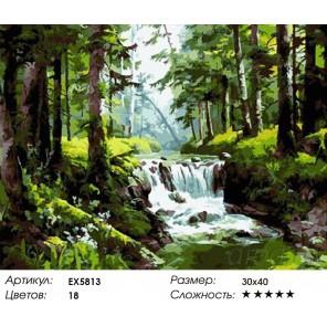 Количество цветов и сложность Пороги Раскраска картина по номерам акриловыми красками на холсте Molly