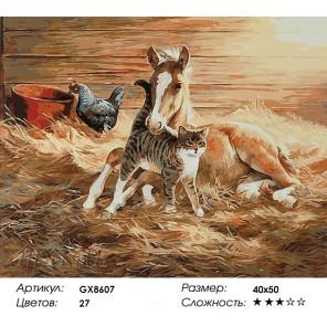 Количество цветов и сложность Кот и жеребенок Раскраска картина по номерам акриловыми красками на холсте