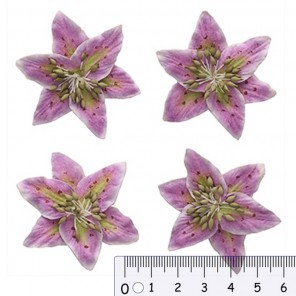 Цветы лилии нежно-сиреневые Цветы бумажные для скрапбукинга, кардмейкинга Scrapberry's