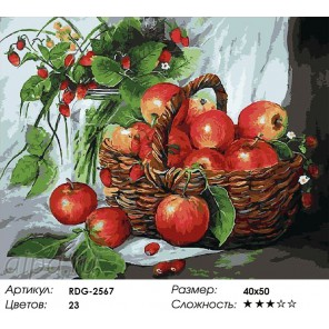Корзинка яблок Раскраска картина по номерам акриловыми красками на холсте