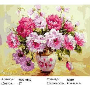 Тонкий аромат художник Антонио Джанильятти  Раскраска картина по номерам акриловыми красками на холсте