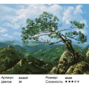 На вершине гор Раскраска картина по номерам акриловыми красками на холсте