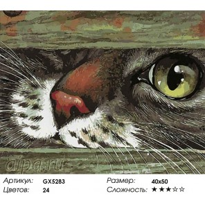 Любопытный нос Раскраска картина по номерам акриловыми красками на холсте