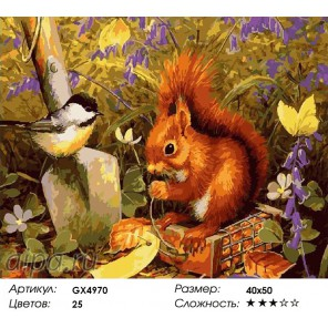 Количество цветов и сложность Белочка и синичка Раскраска картина по номерам акриловыми красками на холсте