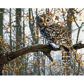 Мудрая сова Алмазная мозаика вышивка на подрамнике Molly