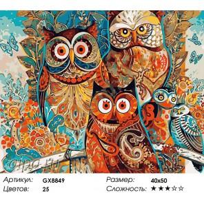 Количество цветов и сложность Совиное царство (художник Дэвид Галхат) Раскраска картина по номерам акриловыми красками на холсте