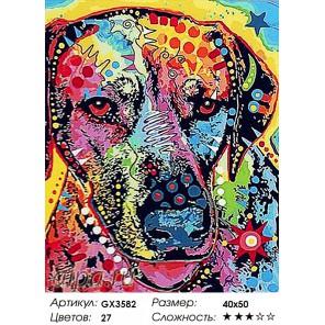 Количество цветов и сложность Разноцветный пес Раскраска картина по номерам акриловыми красками на холсте